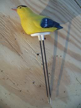 Moisture meters-experience to share? Birdie