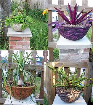what do you get if you mix cement, peat moss and Mel's mix.. Cementpots