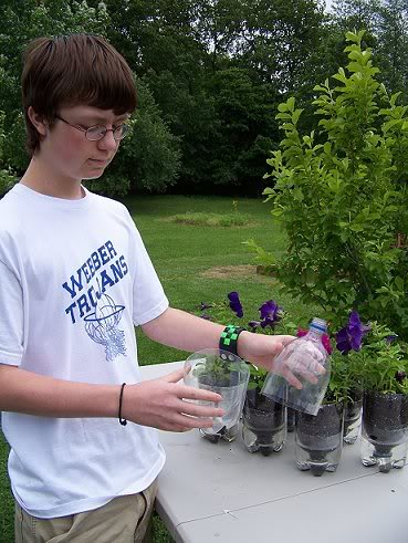 recycled self watering containers for plants Soda2
