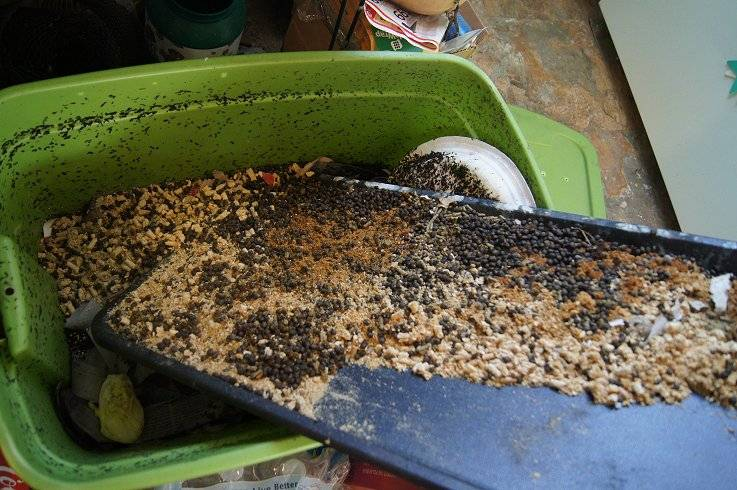 Making a cheap worm bin Wormbinrabbitdroppings_zps872b3878