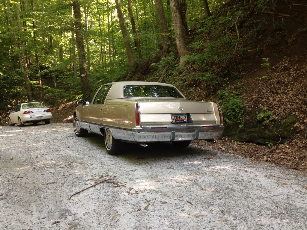 So I spotted a Fleetwood....and now Sprocket has it - Page 2 Photo_zps19dba85f