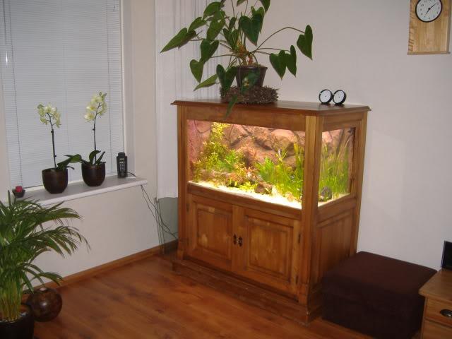 aquarium d'eXecoV - Page 11 1332-1