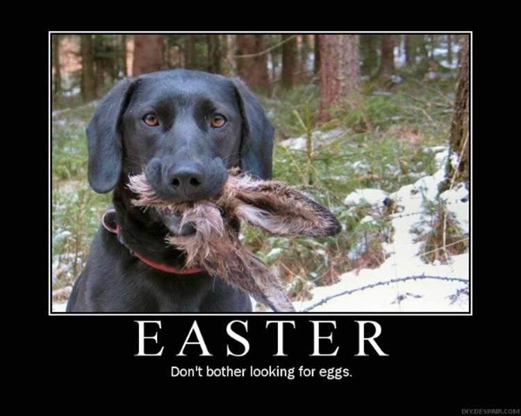 Happy Easter Killdawabbit