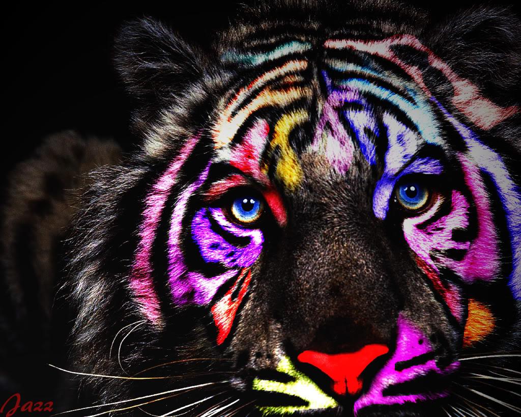 The Power Within ~Open~ RainbowTigerLighting