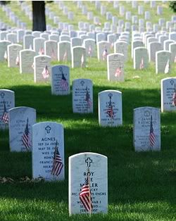 Honor the Fallen Soldier - Freedom Is Not Free ScreenHunter_12May241253