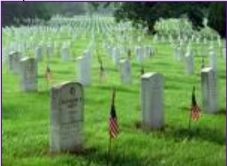 Honor the Fallen Soldier - Freedom Is Not Free ScreenHunter_14May241301