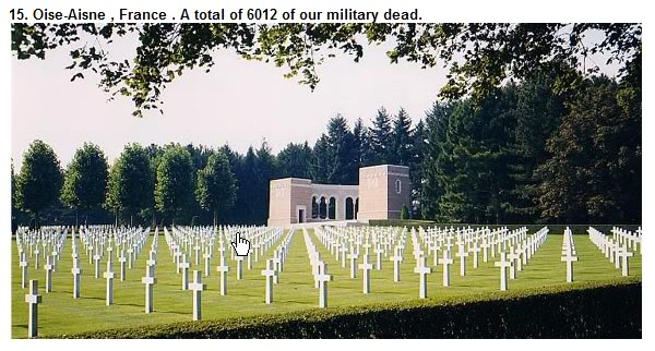 Honor the Fallen Soldier - Freedom Is Not Free ScreenHunter_30May271116