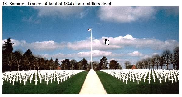 Honor the Fallen Soldier - Freedom Is Not Free ScreenHunter_33May271117