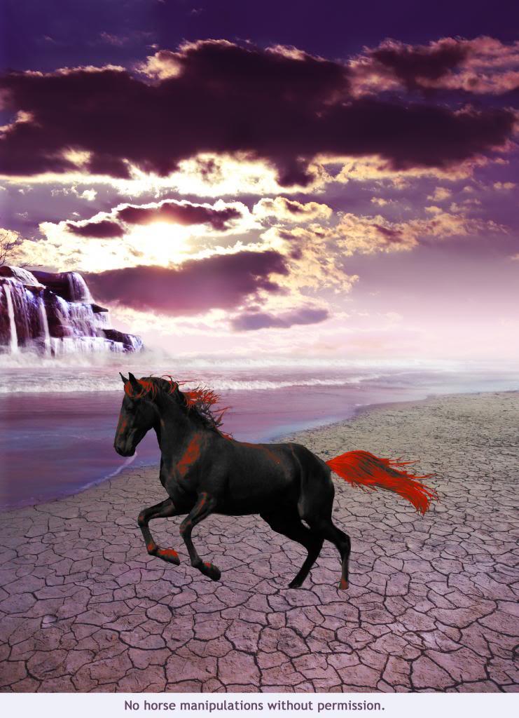 Sunset Waters Sunsetwaterscopy_zpse1b2a09e