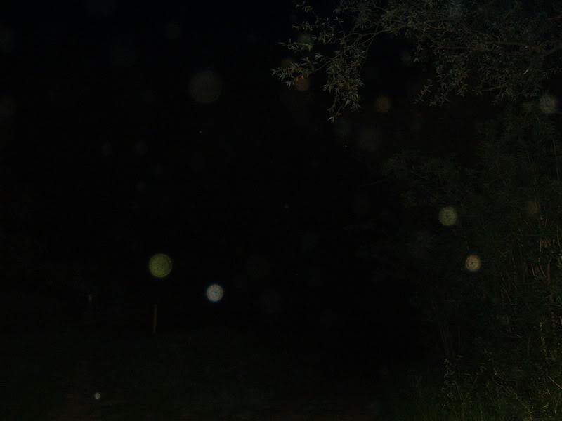 Spook Central DSCF0048