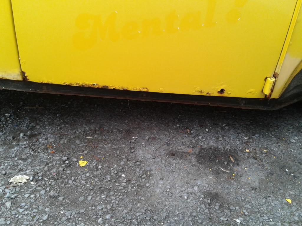 Dizzy dubbers back 2012-01-29135236