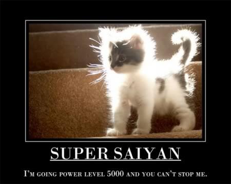 Motivacionales - Página 2 SuperSaiyan
