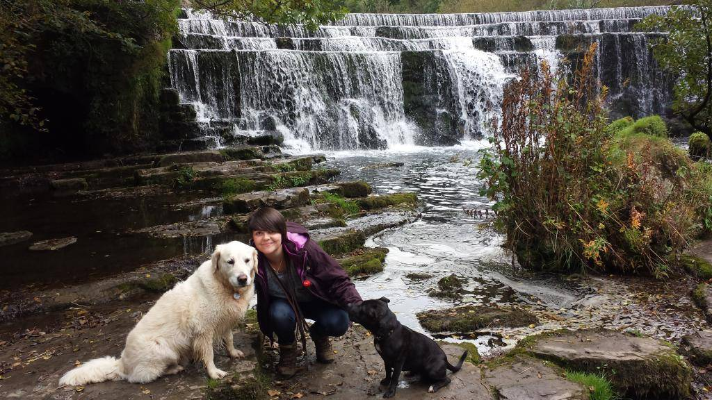 Millie and Jaspers 25 mile walk in the peak district :) 20140927_135123_zps52d771f9