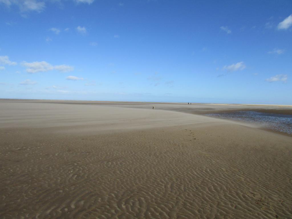 beach day ( pic heavy!! )  IMG_0062_zpshtv8ipca