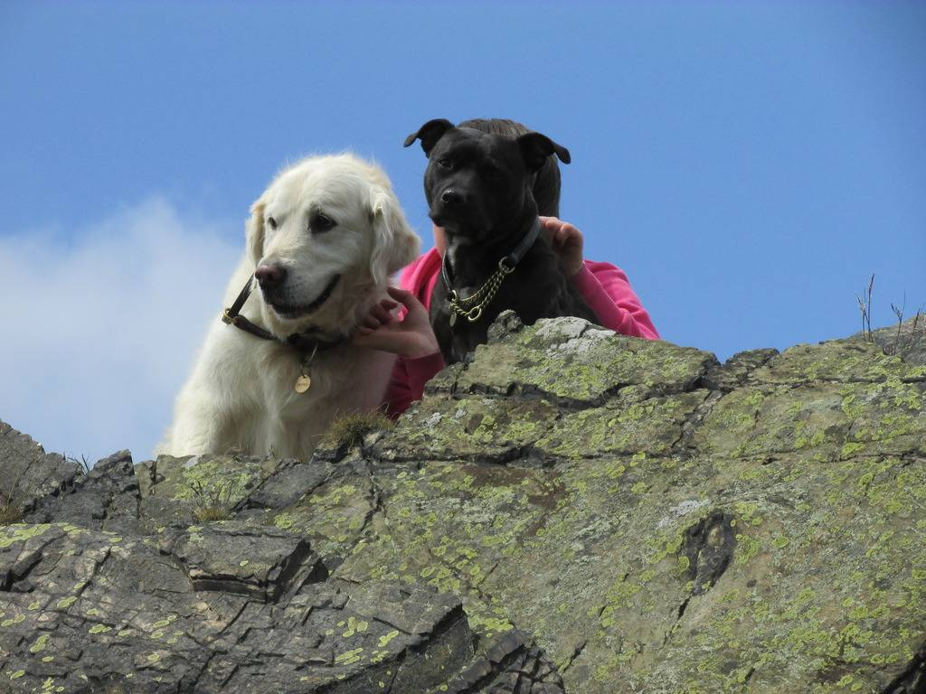 another great day out :) 20 mile walk and play  Looking_zpsqmbcofhk