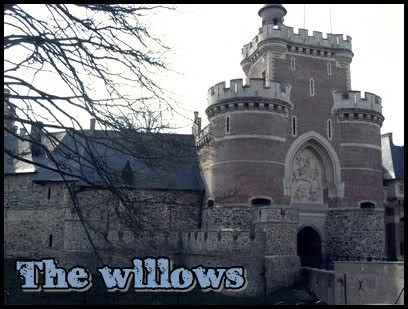 Boarding school «The Willows»