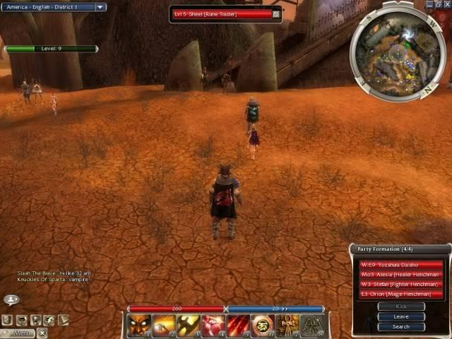 Me at guild wars Gw014