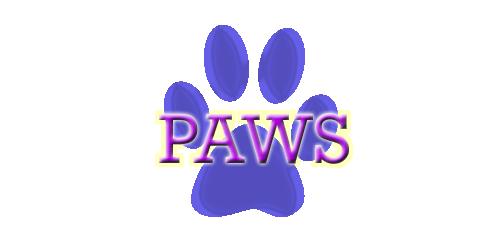 Shop Proposals Paws