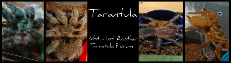 OBT Video Attn: Franklin Tbanner-1