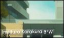 Instituto de Karakura