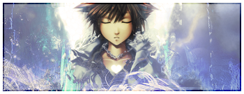 Shadow and the Hero's of Mobius: RP SoraSignature