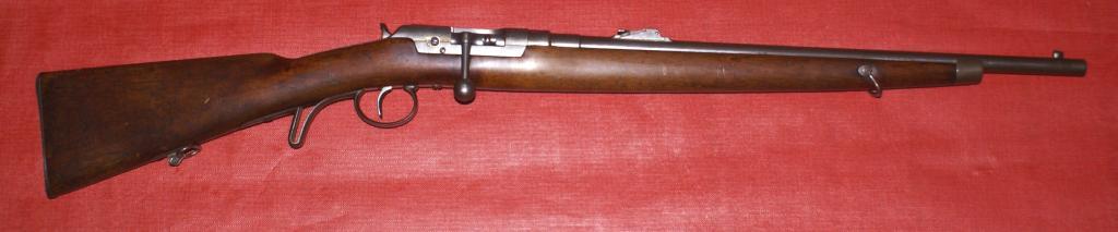 Carabine Fruwirth DSC07365_zps433cd042