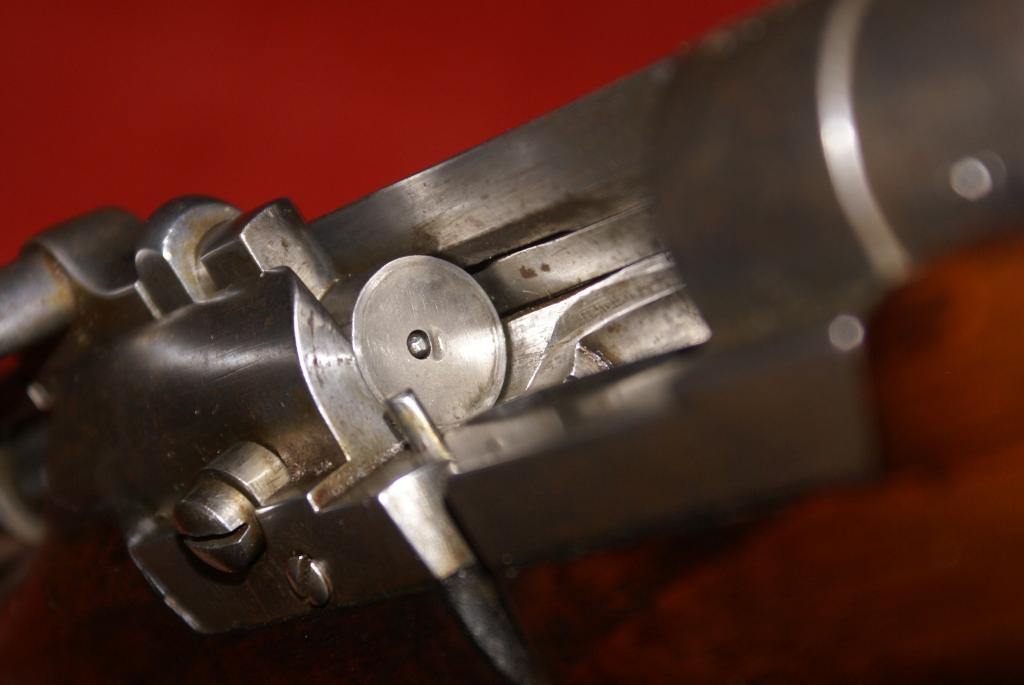 Carabine Fruwirth DSC07374_zpsfd4fefd6