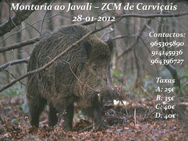 Montaria Carviçais 28-01-2012 CartazJaneiro2012-1