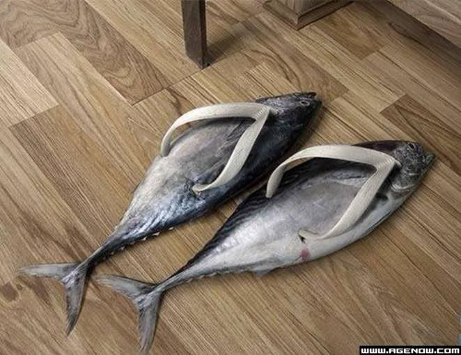 latest shoes design Fish
