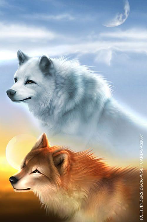 Leah and Sam Wolves_by_khaosdog