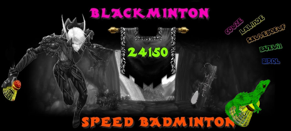 SPEEDBADMINTON 24150