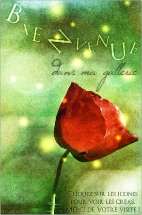 ♥ T.he V.egalerie Bienvenue-3