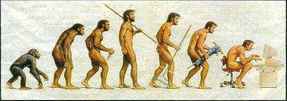 Hình ảnh vui về sự tiến hoá của loài người Evolution