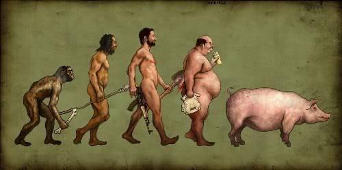 Hình ảnh vui về sự tiến hoá của loài người Funny_Pig_Evolution_pictures