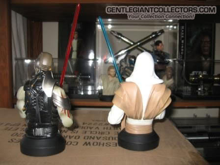 Star wars bust force unleashed - exclusivité shopafx - Page 3 Tfu4