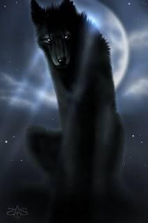 Illyxia Flaze Wolf_black