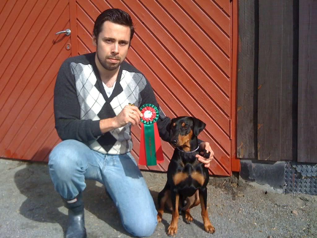 Norsk leonberger klubb, Drammen 28/8 Hiro_champion