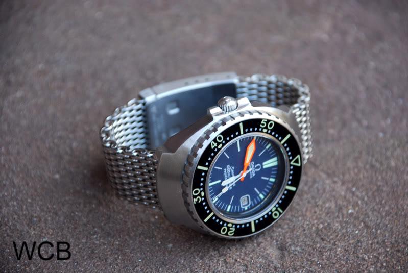 ¿Qué prefieres para los divers vintage? DSC_0011