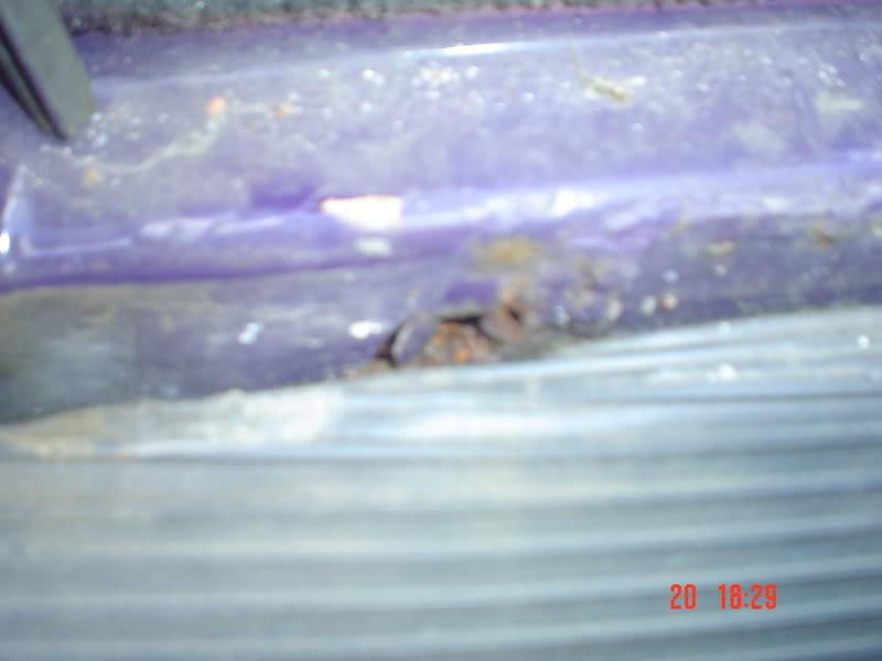 The Bug with no name as YET Thebug009