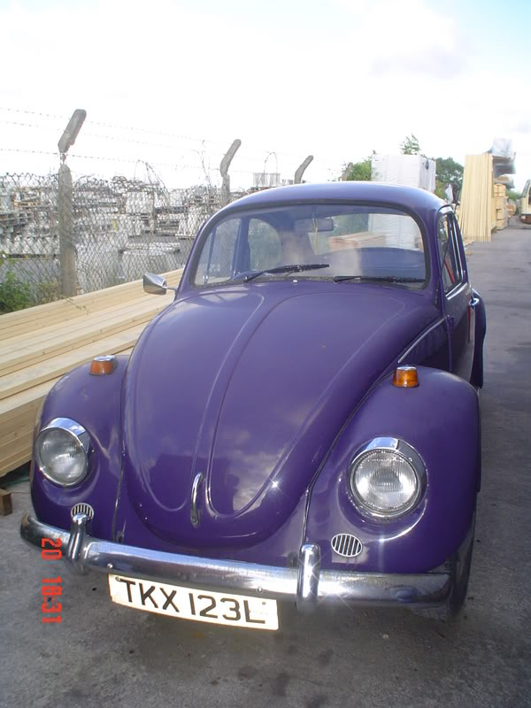 The Bug with no name as YET Thebug013