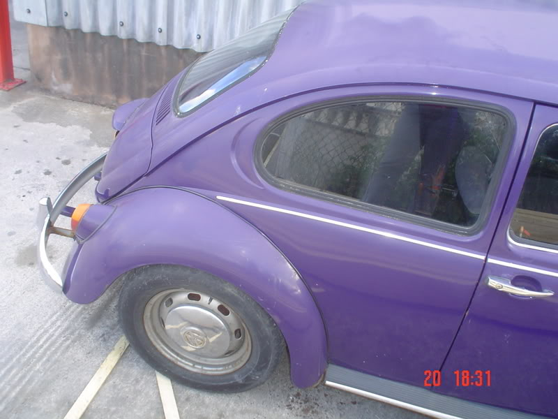 The Bug with no name as YET Thebug015
