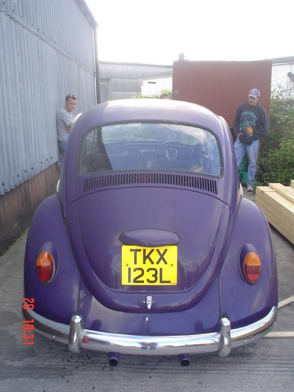 The Bug with no name as YET Thebug016