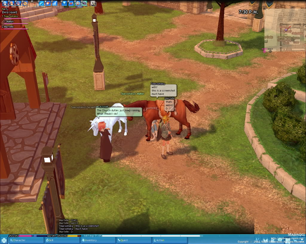 What is this Madness?! Mabinogi_2011_01_09_004