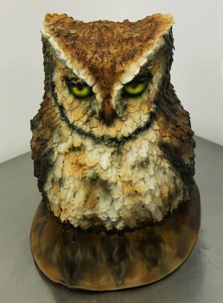 Happy Birthday, Stormcatcher! Owl_cake