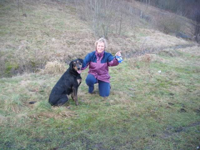 Tyson - 18 month old Doberman cross Labrador - Good with kids,cats+dogs! 2011_0111dogsrescue0052