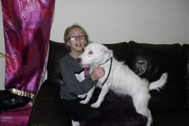 Sophie - 4 year old Rough Coated Terrier - Dog and child friendly SDC10134