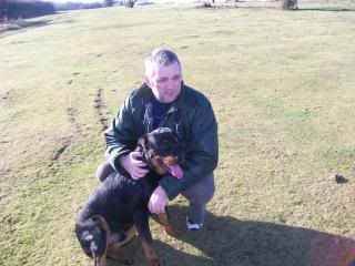 Tango - Handsome 9 Month Old Rotteweiler Pup Tango