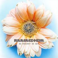 Discografia Rammstein (32 Discos) Front-38