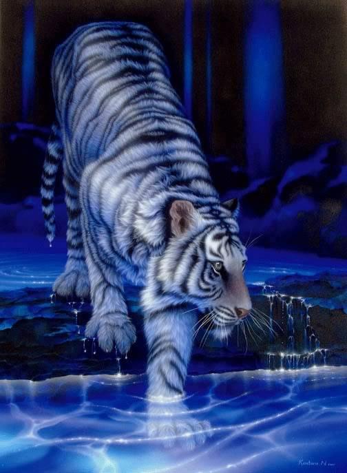Finding Light Through The Dark White-tiger