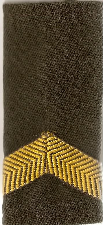 Belgian Army Insignia Scan0002-3